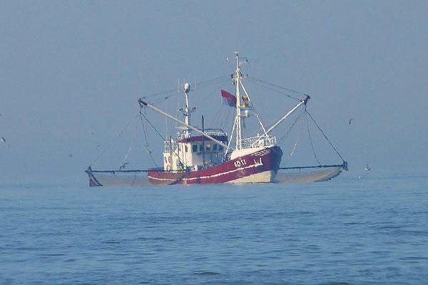 Nordseeschiff